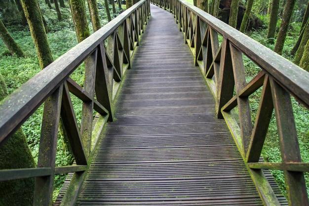 La passerella da legno in taiwan