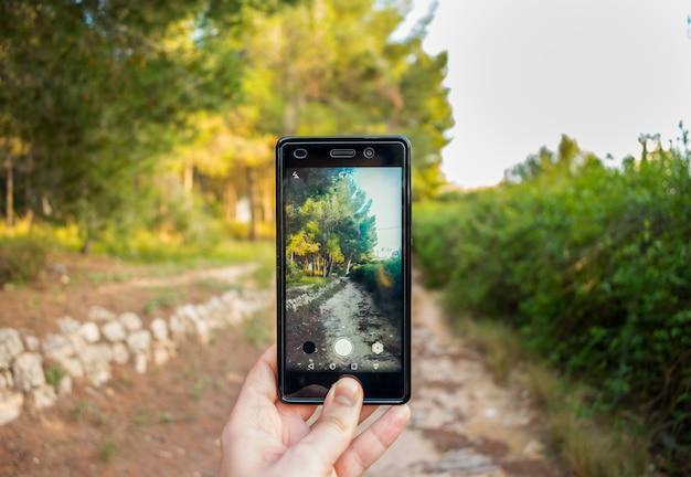 La persona usa il cellulare per scattare una foto della natura.