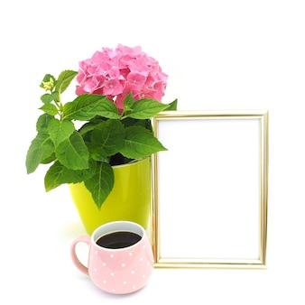 La pianta d'appartamento fiorisce l'ortensia rosa in un vaso verde chiaro.