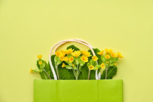 La primaverina gialla fiorisce in un sacchetto della spesa verde con spazio per testo su carta gialla