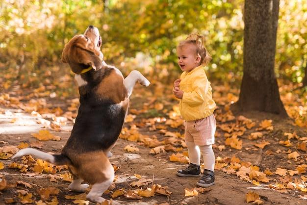 La ragazza che sta davanti al suo cane di animale domestico sta sulla sua gamba posteriore in foresta