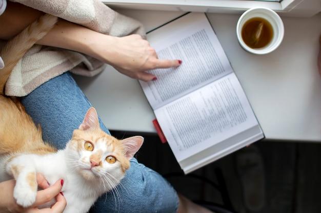 La ragazza coperta da una coperta si siede alla finestra con il suo gatto, legge un libro e beve il tè, insegna al gatto a leggere, copia spazio per il testo