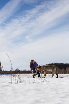 La ragazza è impegnata nell'addestrare un lupo grigio in un campo innevato e soleggiato.