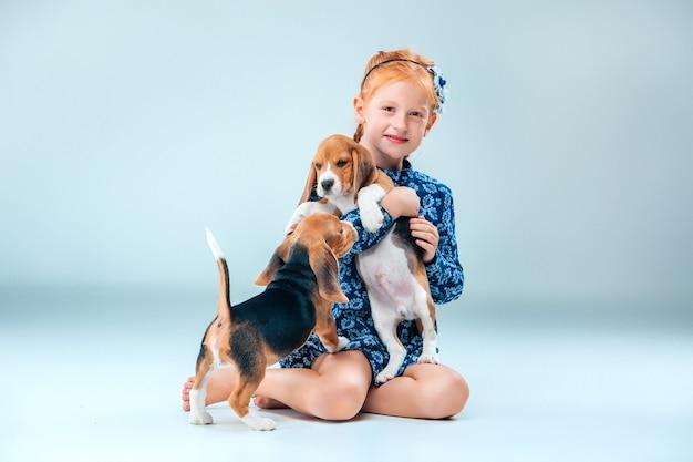 La ragazza felice e due beagle cucciolo sul muro grigio