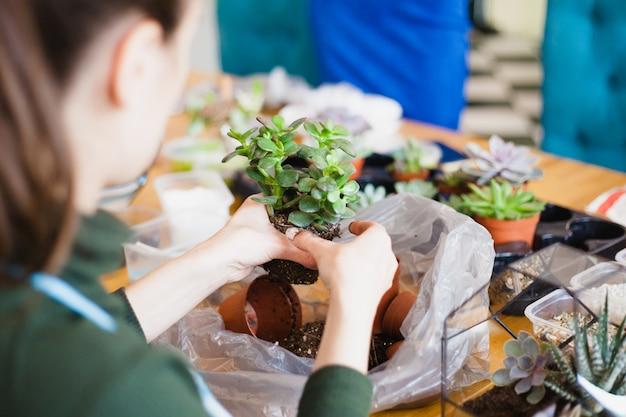 La ragazza pianta una forma di vetro, piantando fiori, un terrario di vetro