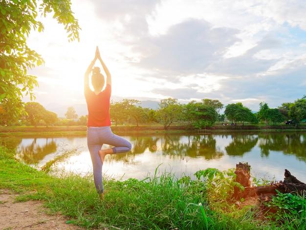 La ragazza prova all'albero posa l'yoga.