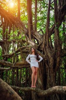 La ragazza sexy a piedi nudi in breve vestito bianco posa sul grande albero di banyan, goa, india