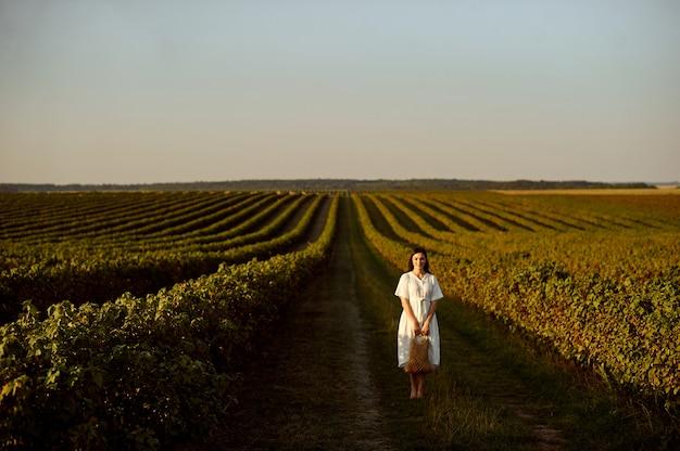 La ragazza sta a piedi nudi su una piantagione di ribes al tramonto.