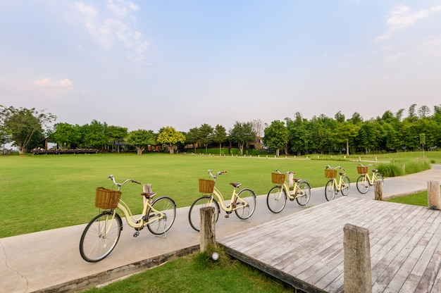 La retro fila bikes il parcheggio sulla via in parco verde