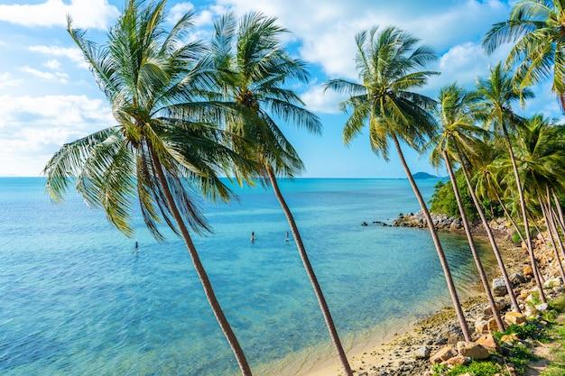 La riva di un'isola tropicale. spiaggia sull'oceano. le palme sporgono un'acqua