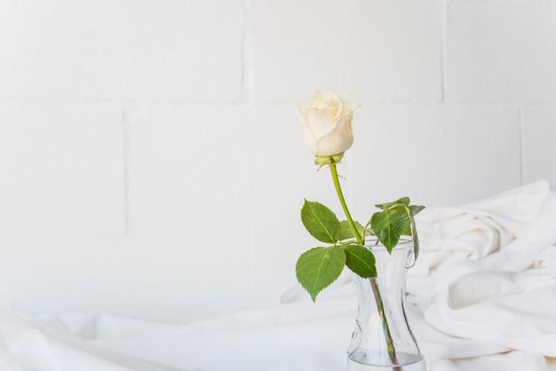 La rosa bianca è in vaso di vetro sul tavolo
