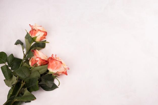 La rosa fiorisce il mazzo sulla tavola bianca