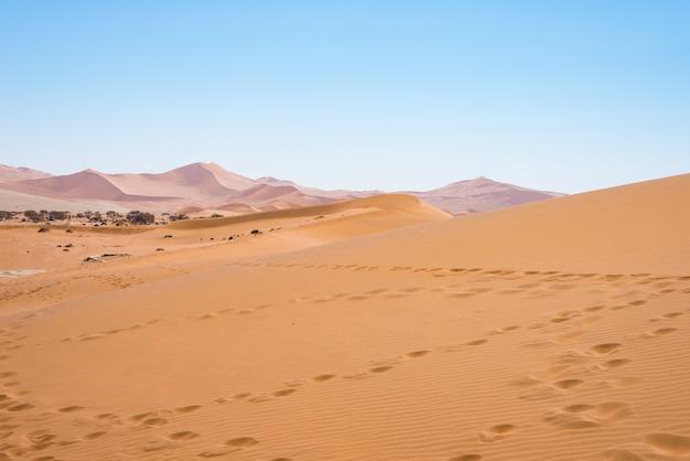 La scenografica sossusvlei e deadvlei, argilla e saline circondate da maestose dune di sabbia.