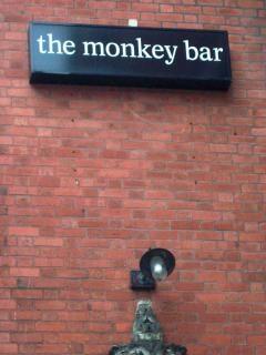 La scimmia bar
