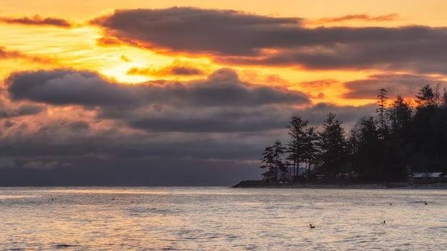 La siluetta degli alberi si avvicina allo specchio d'acqua durante il tramonto