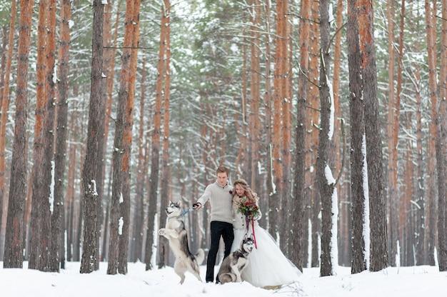 La sposa e lo sposo allegri con due husky siberiani sono posati su fondo della foresta nevosa.