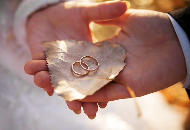 La sposa e lo sposo stanno tenendo la foglia con gli anelli