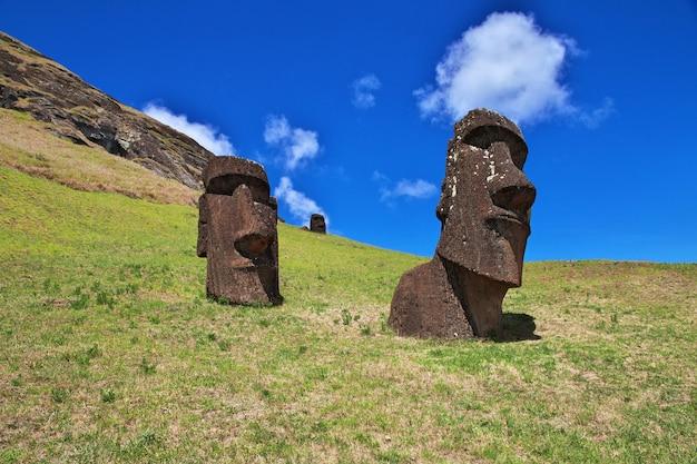 La statua moai a rano raraku sull'isola di pasqua, cile