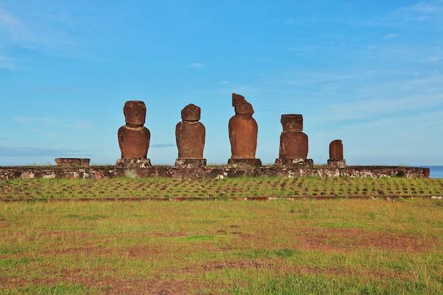 La statua moai in ahu tahai sull'isola di pasqua, cile