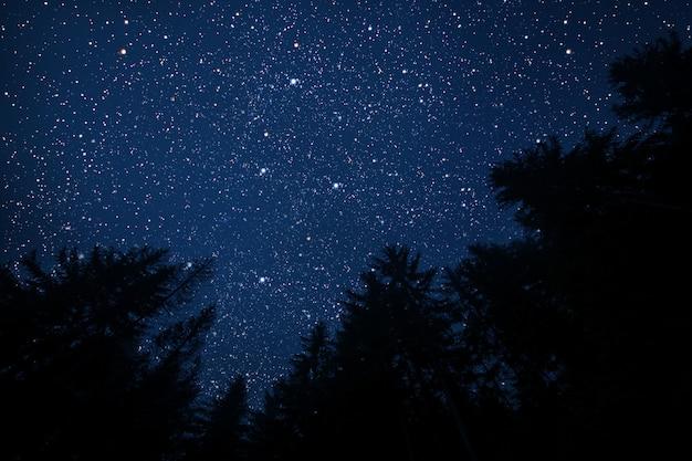 La stella indica il natale di gesù cristo.