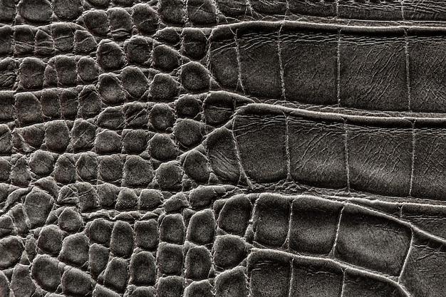 La texture della pelle è grigia