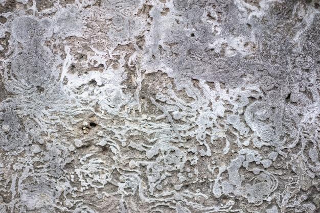 La trama del muro di cemento nudo ha una pelle ruvida. ha un motivo astratto in tono grigio.