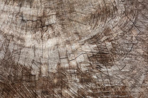 La vecchia struttura di legno marrone da distrugge la foresta - fondo