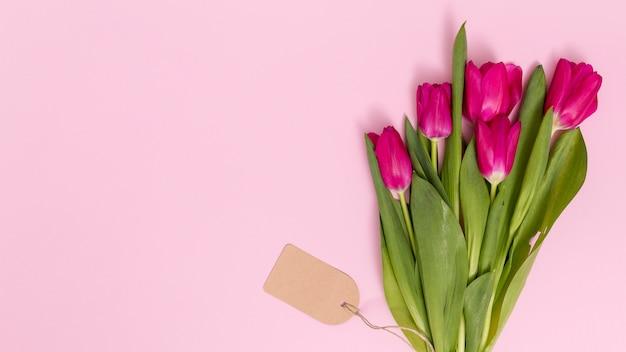 La vista dell'angolo alto del tulipano fiorisce con il prezzo da pagare sul contesto rosa