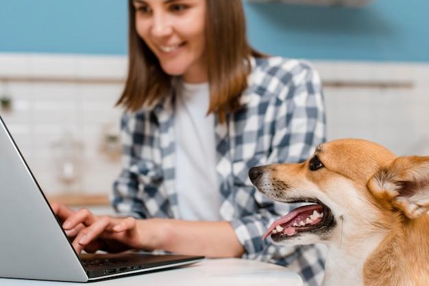 La vista laterale del proprietario di sorveglianza del cane lavora al computer portatile