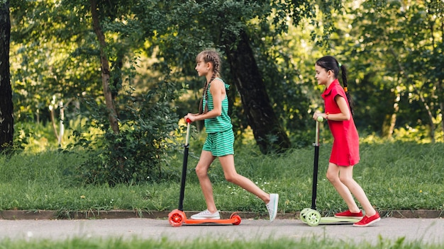 La vista laterale di due ragazze che guidano spinge il motorino nel parco