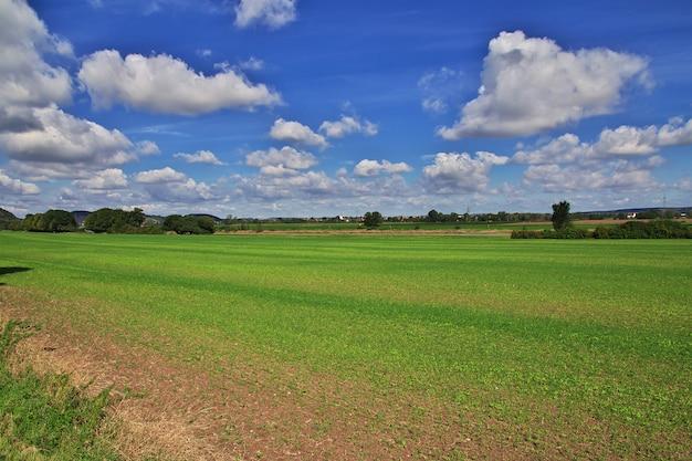 La vista sulla valle del fiume elba in sassonia, germania