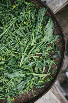 La vista superiore della mano ha selezionato bok choi fresco per produrre un pasto in vassoio di tessitura.
