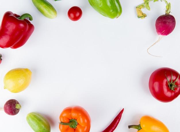 La vista superiore delle verdure come pomodoro del ravanello del cetriolo del pepe ha messo nella forma rotonda su bianco con lo spazio della copia