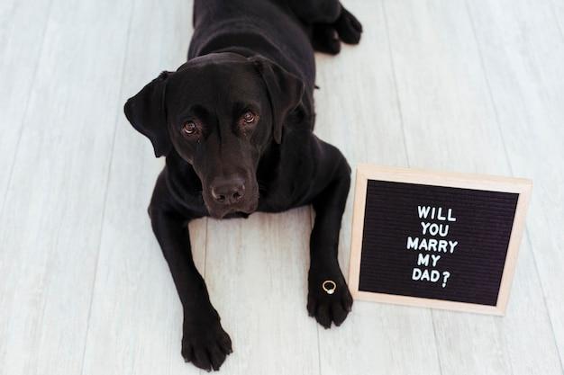 Labrador nero con lavagna e anello. concetto di matrimonio