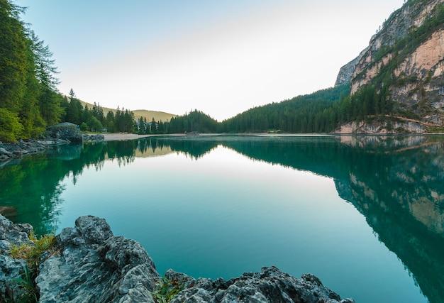Lago circondato da alberi