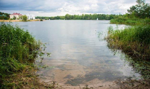 Lago con canna, luogo di pesca, paesaggio naturale al giorno d'estate