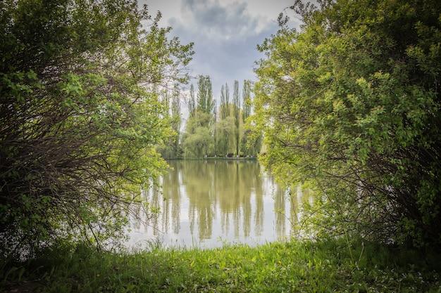 Lago nella natura