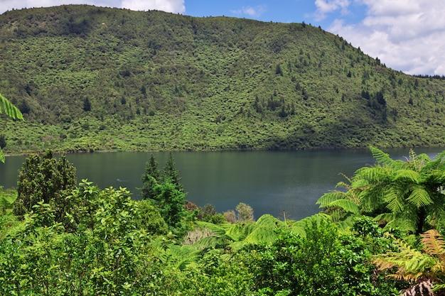 Lago verde nel distretto di rotorua in nuova zelanda
