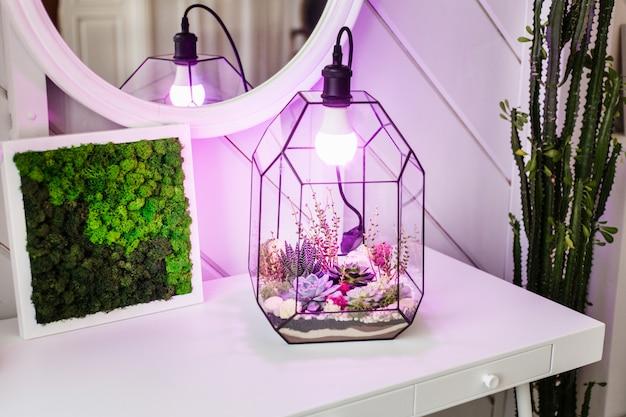 Lampada in design di vetro, lampada e interni, moderno design per la casa, comfort, illuminazione, piante, luce e lettura