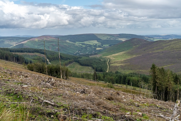 Lanscape of wicklow way with forest cut down.