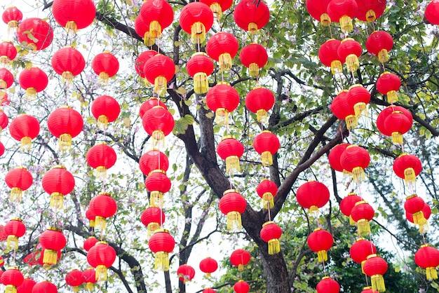 Lanterne rosse in una giornata limpida