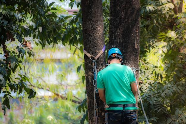 Lato posteriore dell'uomo sull'albero con casco e cintura carbinet, sport all'aria aperta.