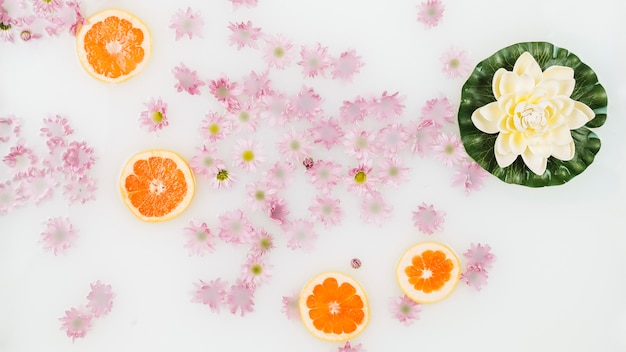 Latte da bagno decorato con fette e fiori di pompelmo