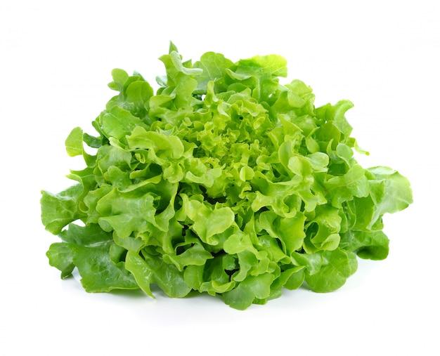 Lattuga delle foglie verdi isolata su fondo bianco