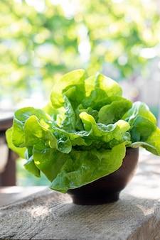 Lattuga fresca in una ciotola dell'argilla nel giardino di primavera. stile di vita alimentare sano