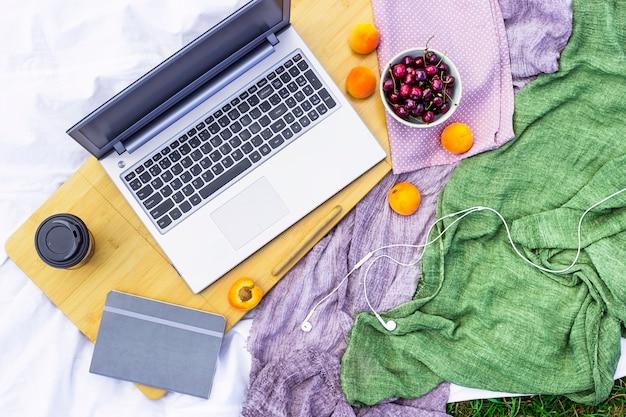 Lavorare su un computer portatile per un picnic in natura - accanto a una ciotola di ciliegie e albicocche