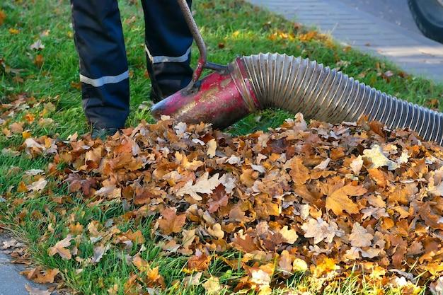 Lavoratore che pulisce le foglie usando uno strumento soffiatore per foglie