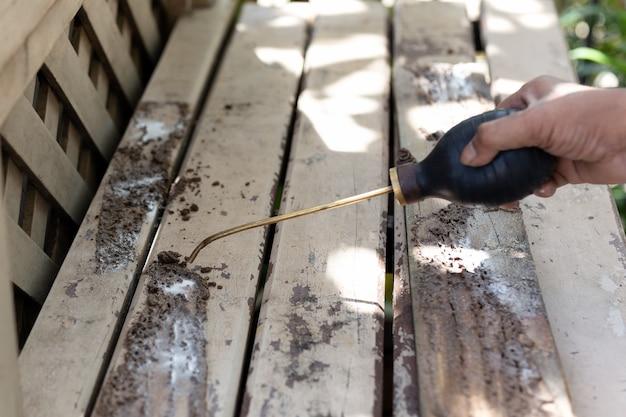 Lavoratore che spruzza insetticida chimico per controllo dei parassiti della termite