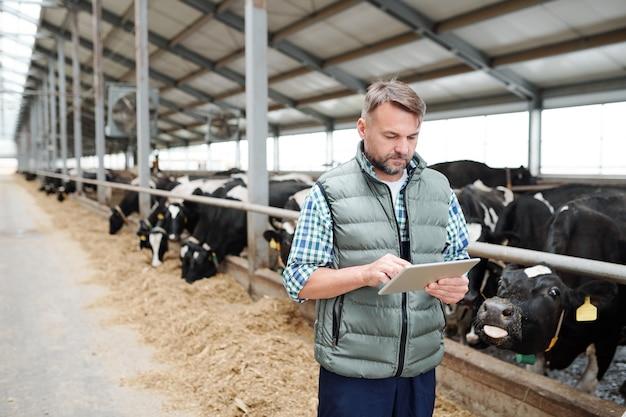 Lavoratore maschio maturo della fattoria degli animali contemporanea utilizzando la tavoletta digitale