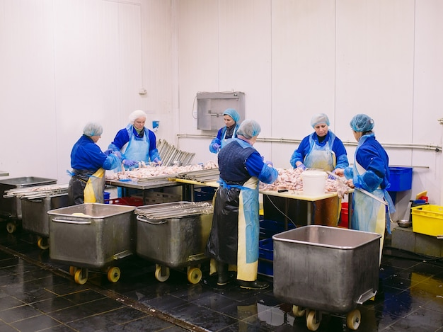 Lavoratori che lavorano in una pianta di carne di pollo.